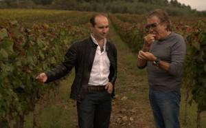 Roberto & Tomasso Cavalli