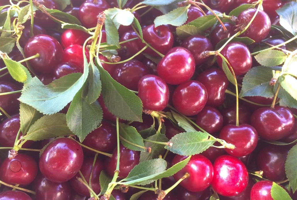 b0e7f761af2 Καλοκαιρινά φρούτα και κρασί! - Winetuned